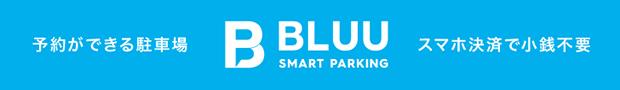 BLUU Smart Parking